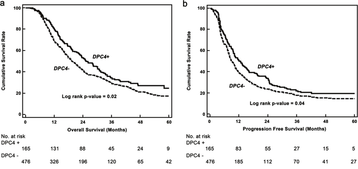 Kaplan–Meier survival curves.