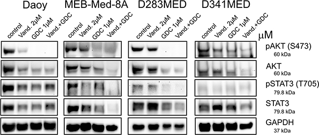 Combinational treatment of Vandetanib and GDC-0941 leads to profound inhibition of STAT3 and PI3K/AKT activation.