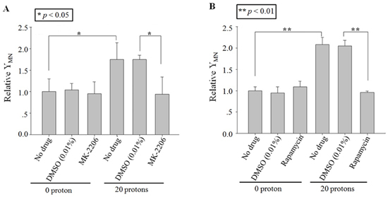 Effect of inhibitors on cytoplasts targeting-induced bystander effect.