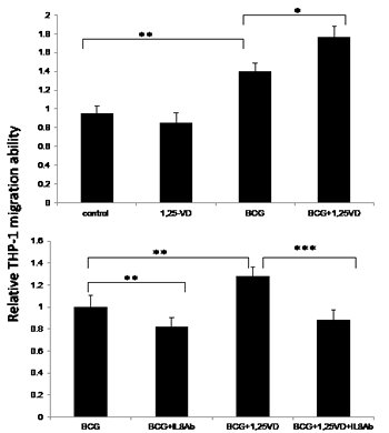 1,25-VD promotes THP-1 cell migration through IL-8.