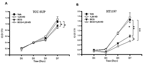 BCG-induced macrophage cytotoxcity against BCa cells.