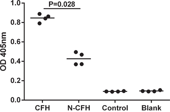 Binding of CFH to immobilized perlecan was assessed by ELISA.
