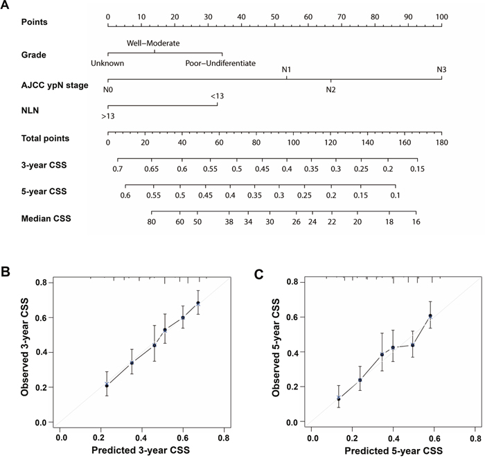 Nomogram for predicting 3-year and 5-year CSS of patients with GC who received Pre-RT.