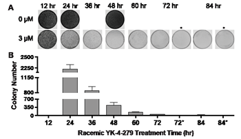 Exposure time to YK-4-279 is a critical variable to eliminate ES clonogenicity.