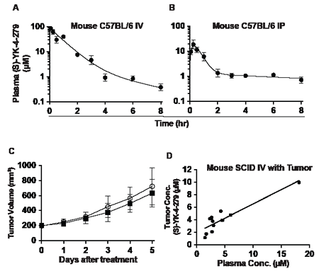 Pharmacokinetics of YK-4-279 in mouse models.