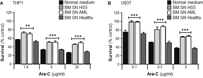 Primary human bone marrow stroma cell supernatant protects leukemia cells from Ara-C induced cytotoxicity.