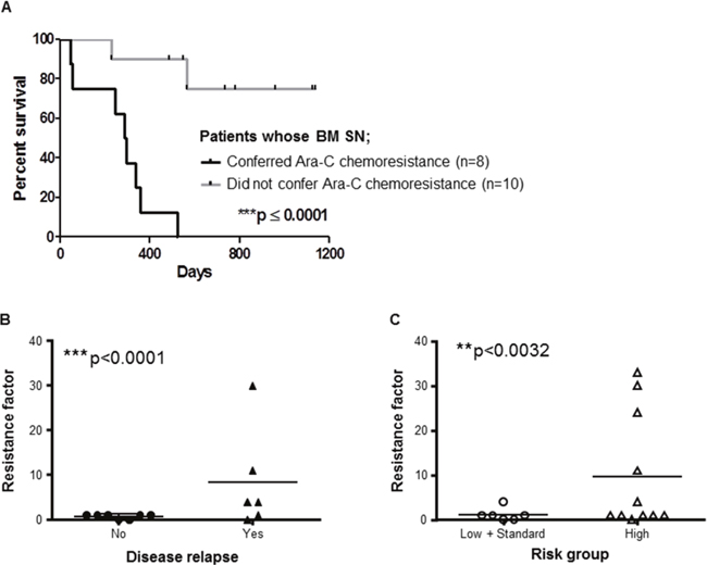 BMSCs from AML patients play key role in patients' outcome.