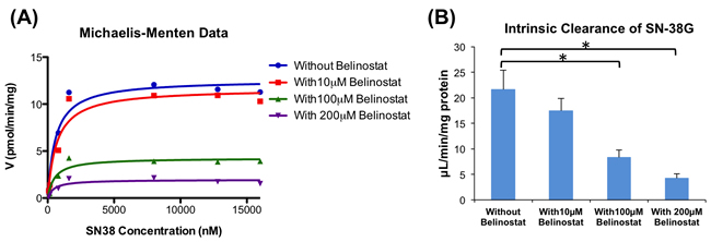 Enzyme kinetics of glucuronidation of SN-38 by UGT1A1.