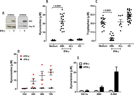 Expression and Function of IDO1 in BM Samples from Children with AML.