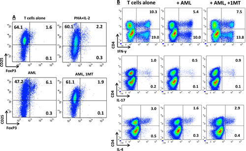 Effects of IDO-Expressing AML Blasts on T-Cell Expression of FoxP3 and on Cytokine Production Profile.