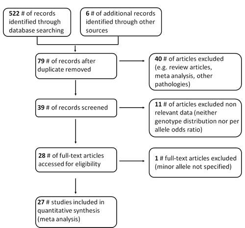 Flow diagram summarizing the study selection process.