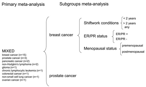 Graph summarizing the study design.
