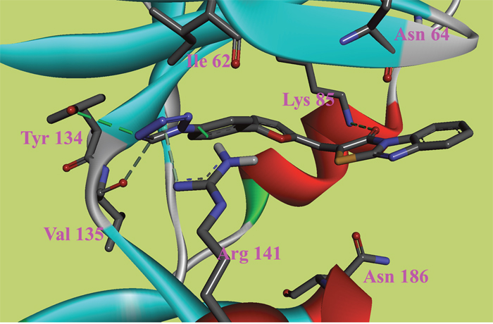The ATP binding site is represented in ribbon form, and ligands are shown as stick representation, colored by element, H-Bonding interactions are presented with red lines.