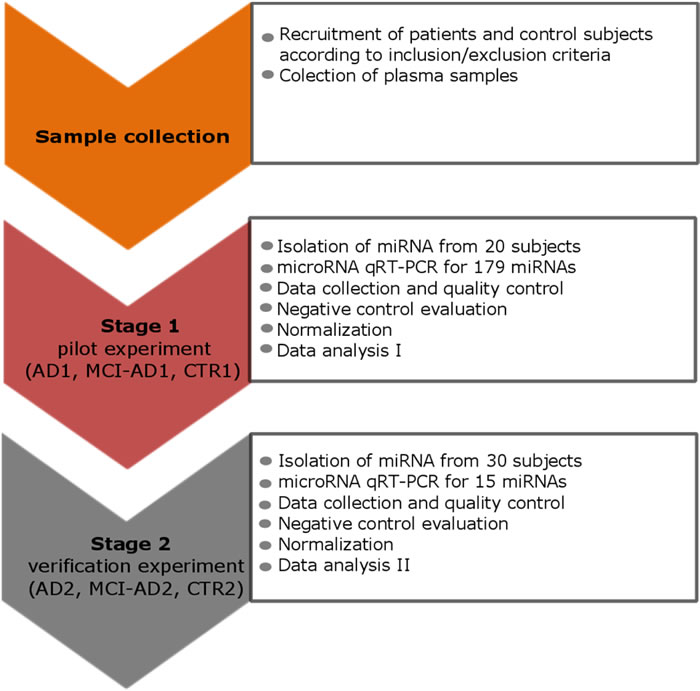 The study design scheme that outlines the two stages: the pilot and the verification stage.