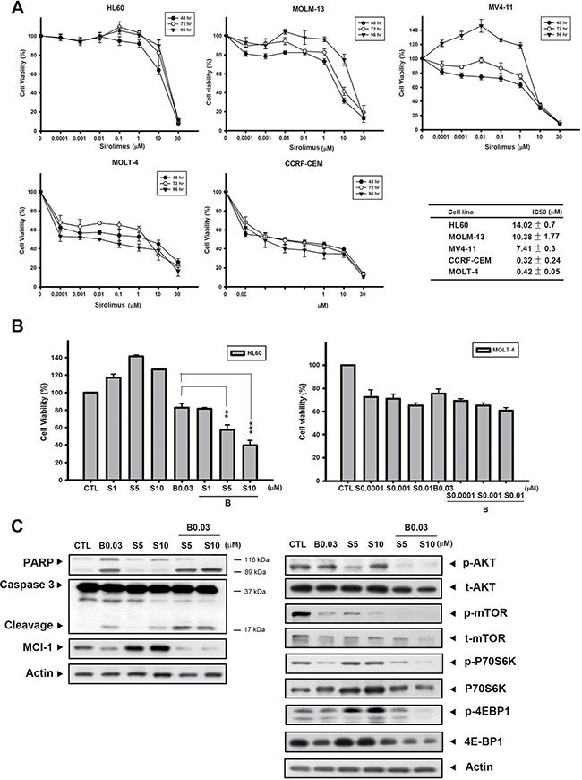 B392 sensitized sirolimus anticancer activity in sirolimus-resistant cell line.