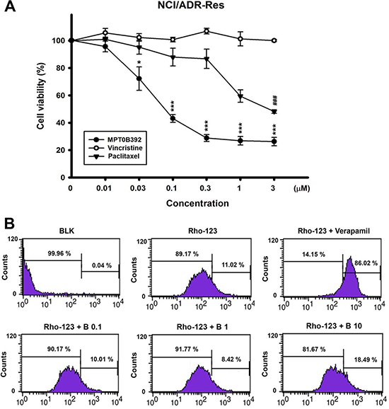 The cell viability of B392 on NCI/ADR-RES cell line and the effect on p-gp activity.