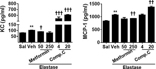 AMPK prophylactically reduced pro-inflammatory cytokine release in BAL fluid in emphysematous mice.