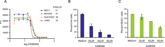 CIGB-300 decreases the viability and proliferation of CLL cell lines.