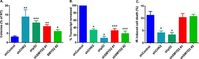 SMYD2 regulates leukemia cells response to genotoxic stress.
