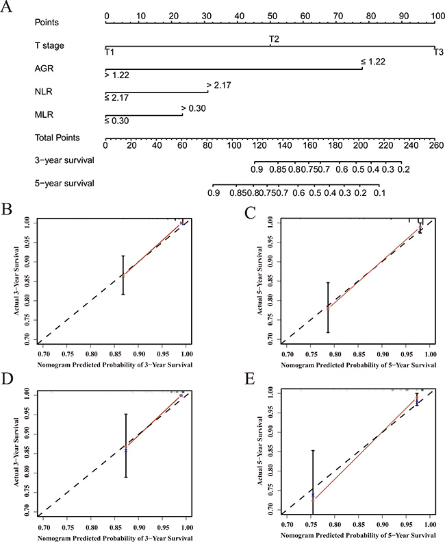 Overall survival predictions based on a nomogram including inflammation-based prognostic scores and clinicopathological characteristics in patients with localized or locally advanced CCRCC.
