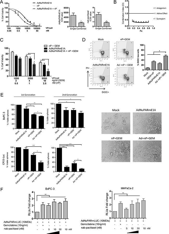 Cytotoxic and synergistic effects of the combination of AdNuPARmE1A with gemcitabine plus nab-paclitaxel in cellular models.