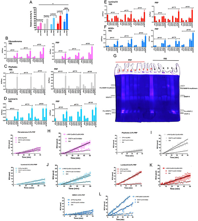 Detection of proteolytic activity on CM with 2.5% PRP supplementation of stromal and epithelial breast tumor cells.