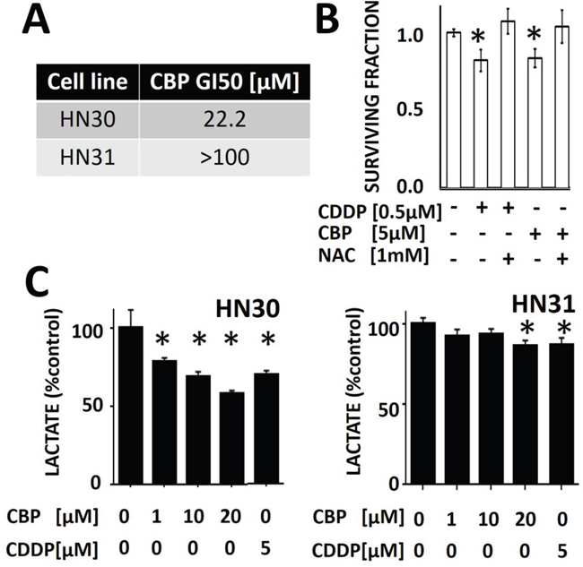 Differential sensitivity of HNSCC cells to cisplatin (CDDP) and carboplatin (CBP).