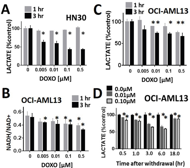 Lactate interrogation predicts doxorubicin cytotoxic effects in HNSCC and ALL.