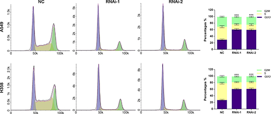 Silencing of TRIM47 induced G0/G1 arrest in NSCLC cells.