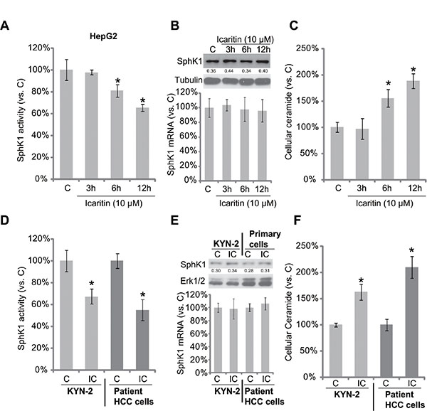 Icaritin inhibits SphK1 activity, but increases cellular ceramide production in HCC cells.