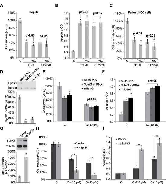 SphK1 is the primary target of icaritin in HCC cells.