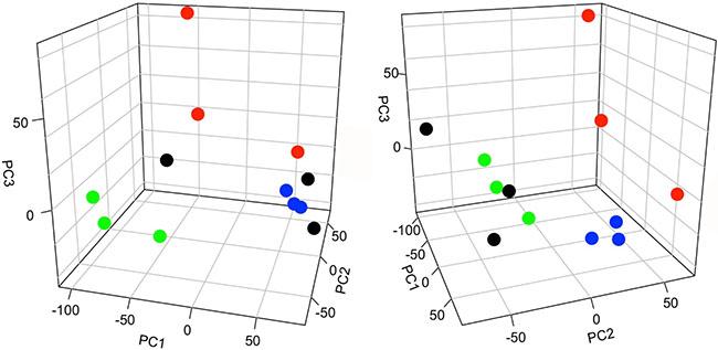 Principal component analysis (PCA) of peptide abundance data.
