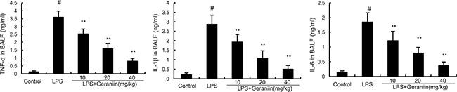 Effects of geraniin on TNF-α, IL-1ß, and IL-6 production in the BALF of LPS-induced ALI mice.