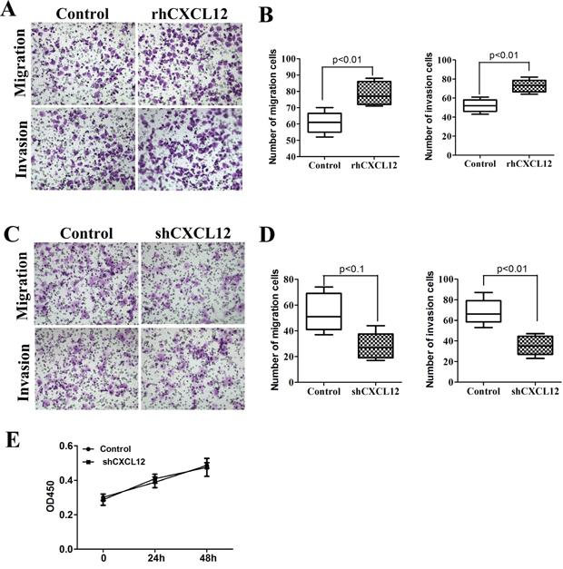 CXCL12 mediates ECSCs' high propensity of invasion and metastasis.