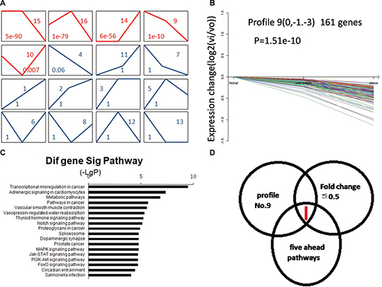 The target gene HPGD was selected by bioinformatics analysis.