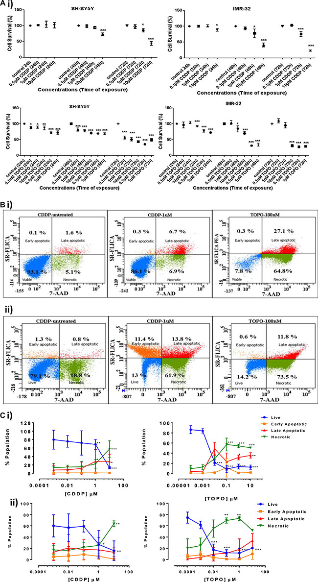 Cell survival and apoptosis in neuroblastoma cells following CDDP or TOPO treatment.