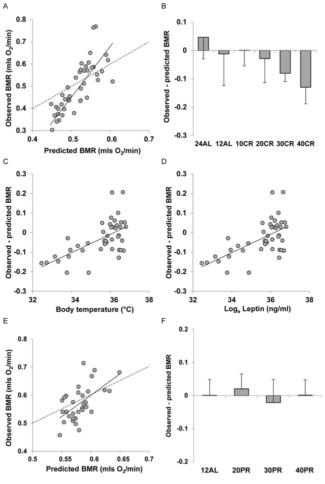 Comparison of observed basal metabolism after calorie or protein restriction (CR or PR) and the predictions of Model 1 based on total body mass.