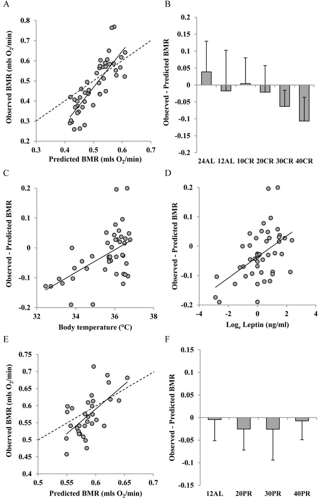 Comparison of observed basal metabolism after calorie and protein restriction (CR and PR) and the predictions of Model 2 based on lean and fat mass.