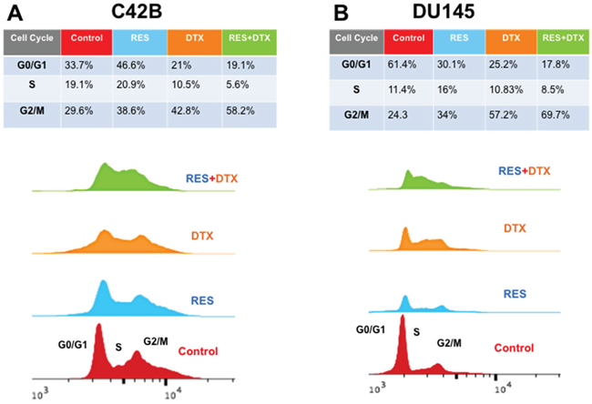 Flow cytometry analysis for cell cycle DNA content in G0/G1, S, G2/M phase after treatment of RES, DTX and RES+DTX at 48h in C4-2B and DU145 PCa cells.