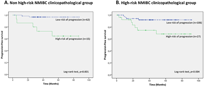 Kaplan-Meier curves for the two-miRNA prognostic classifier showing time to progression in clinicopathological groups of risk.