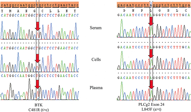 Testing DNA derived from peripheral blood plasma is more sensitive than serum and even cells.