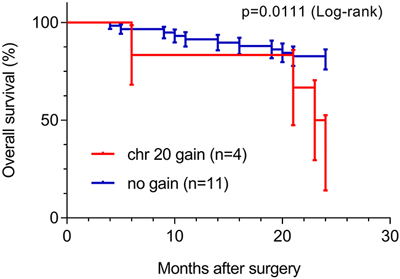Overall survival analysis of sporadic ccRCC patients (n=64, 24 month follow-up), based on chromosome 20 copy number alteration.