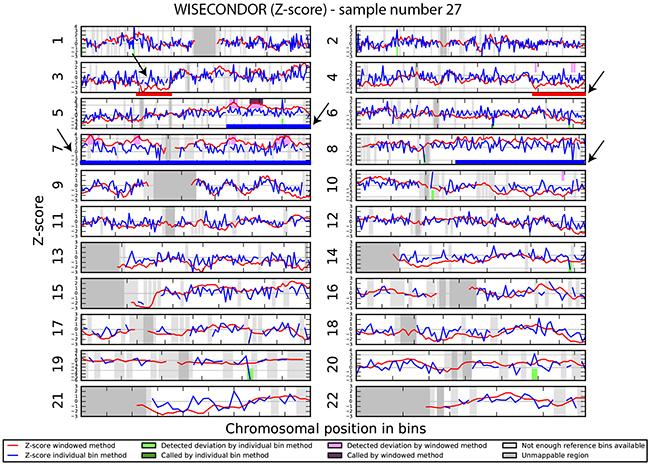 Chromosomal aberrations in cfDNA.