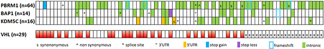 Distribution of variants in affected samples in relation to VHL mutations.