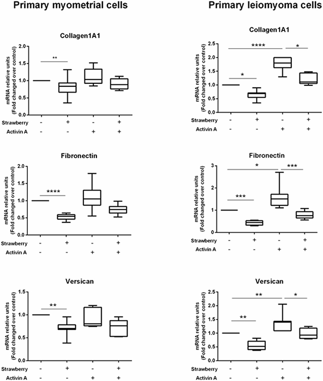 Effect of strawberry extract on activin A induced ECM components mRNA expression in myometrial and leiomyoma cells.