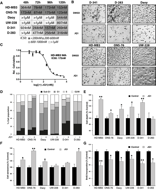 JQ1 treatment reduces viability of medulloblastoma cells.