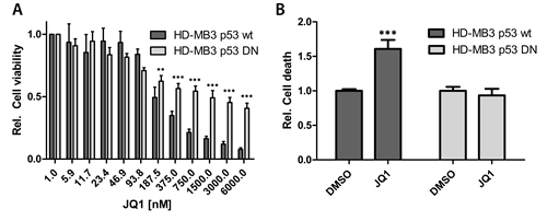 Enforced expression of a dominant-negative TP53 mutant abrogates the JQ1 effect.