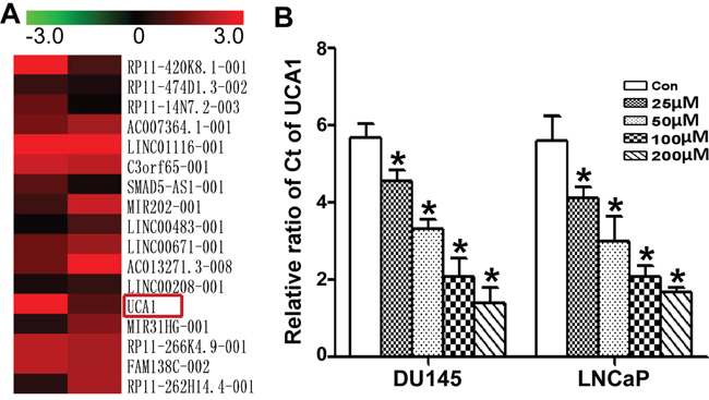 Comparison of the change in lncRNAs in PCa with ATR treatment.