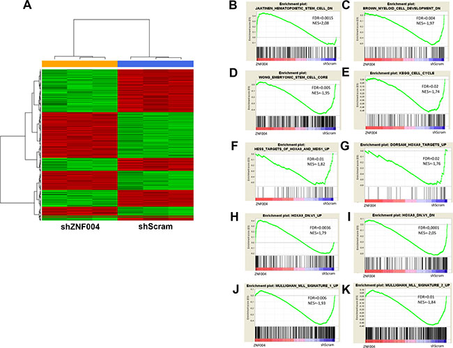 Microarray results of ZNF521 depletion in THP-1 cells.