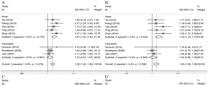 Subgroup analysis of ethnicity for ERCC2 rs13181 polymorphism and pancreatic cancer.